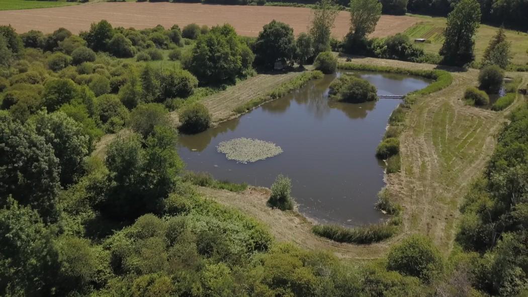 La Beuronne (Les Rivieres Gites)